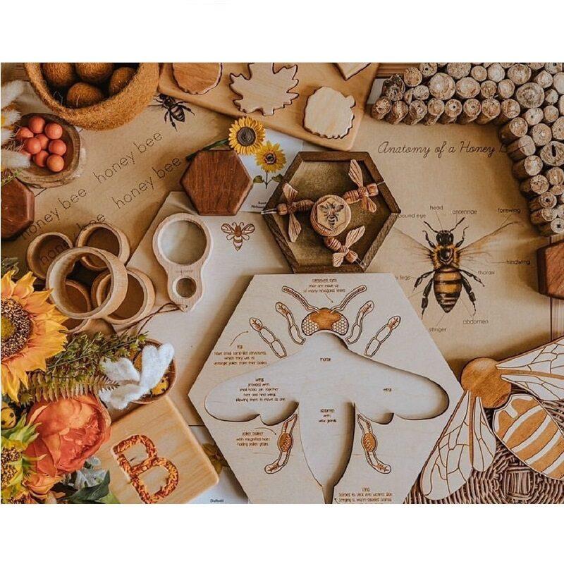 Puidust õppepusle mesilasest