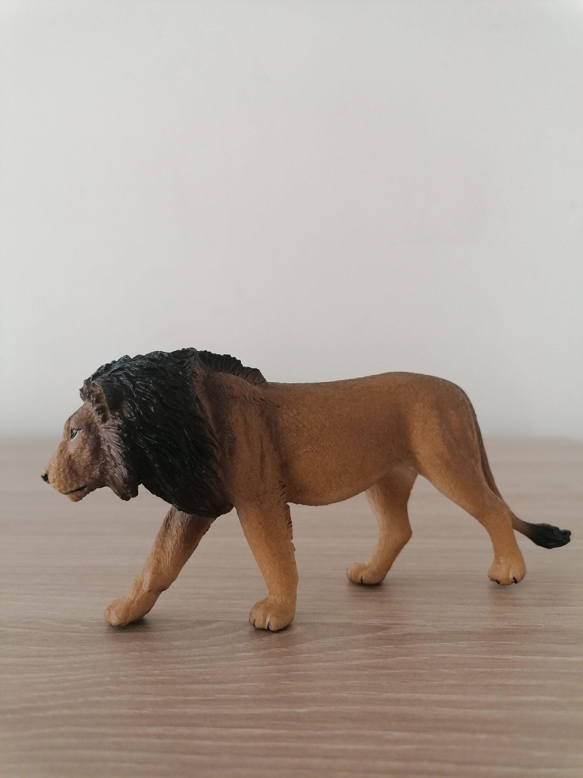 lõvi (1)