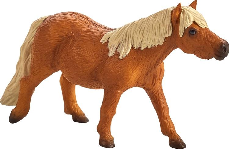 shetlandi poni 387231