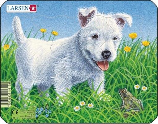 valge koer- M13