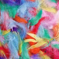 Värvilised suled kunsti meisterdamiseks
