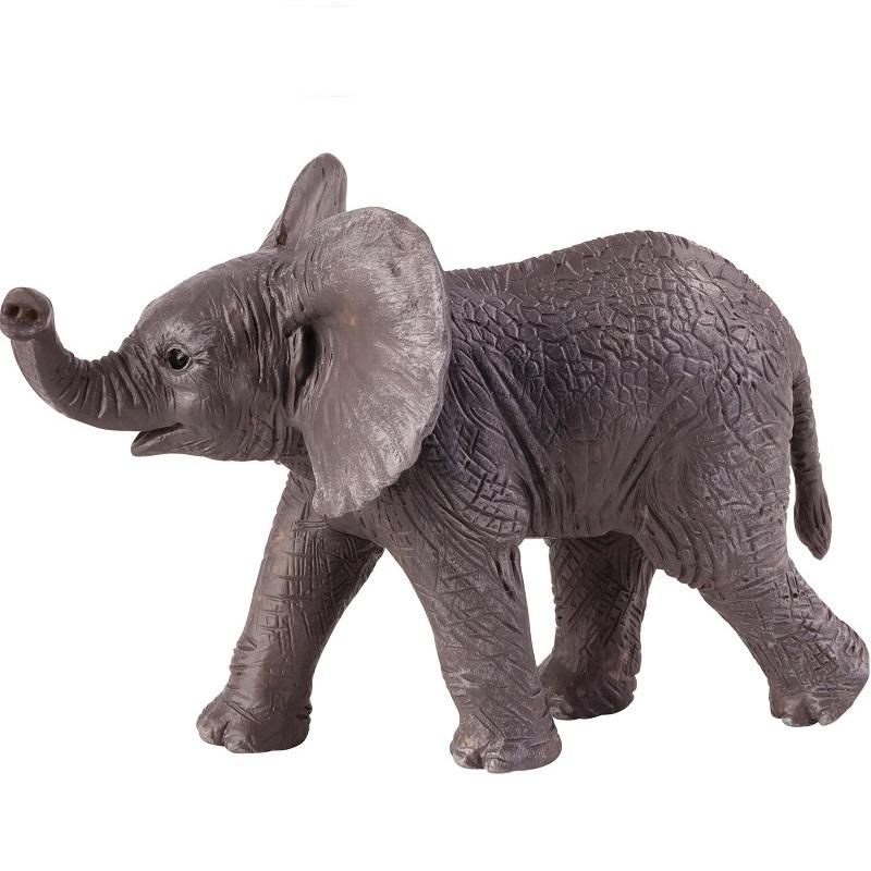 Aafrika elevandipoeg – kõrvad püsti