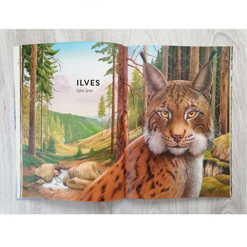 Realistlikus suuruses loomapiltidega raamat