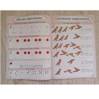 Töövihik matemaatika ja eesti keele harjutamiseks lastele